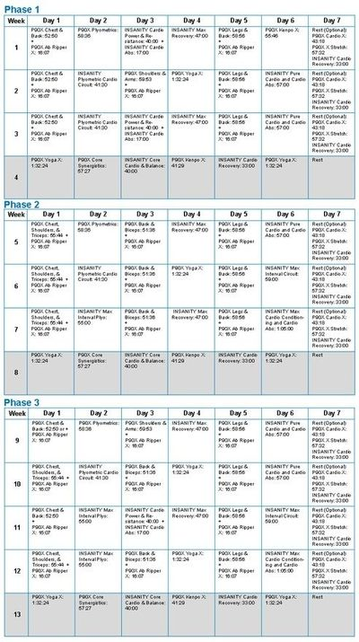 P90X and Insanity hybrid workout schedule health-and-fitness / fitness ...