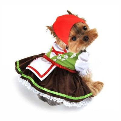 Designer Dog Clothes, Dog Accessories, Dog Carriers ...