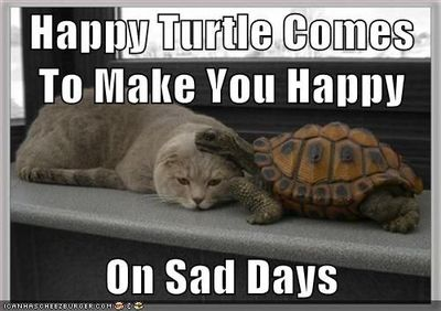 Happy Turtle Makes Me Happy
