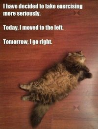 Jacobs exercise routine. favorite-cat-pictures lose-wieght fitness fun-stuff fitness great-abs