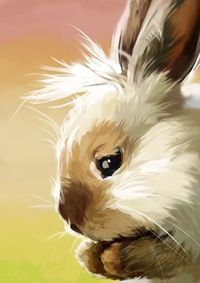 painted bunny