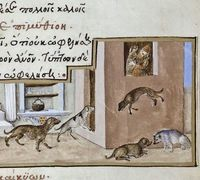 This beautiful rendering of a domestic dog pack is one of 135 illustrations from what is known as the Medici Aesop Manuscript. The art is usually attributed to Mariano del Buono, a prolific illustrator of lavish sacred texts. The fable here is �€&#3...