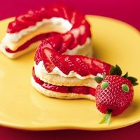 Strawberry Shortcake Snake