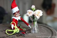 {Elf on the Shelf} Horticulture Elf ... ha, I like this one. We have so mini vases... I'm going to do it.
