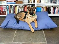 Bumbling Through Domesticity: The Puppy and The Pea, or, How To Make A Dog Bed