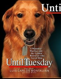 reading this now...story of an incredible service dog and his master...